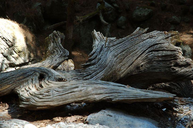 Samaria  najdłuższy wąwóz Europy, Grecja, Kreta