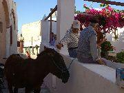 Santorini - Oia /Ia/ -  w oczekiwaniu na turystę