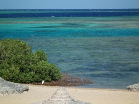 Laguna z rafą