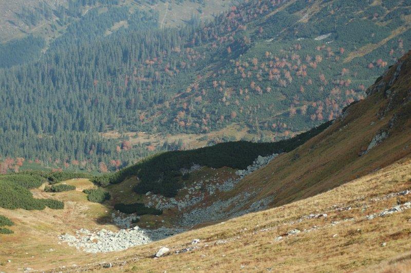 W oddali linia wzniesień i siny cień góry