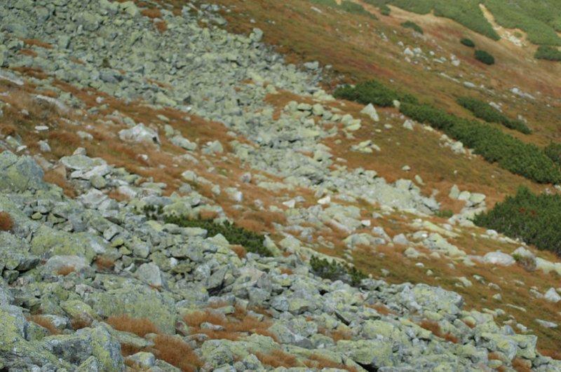 A doliny w oddali pełne skruszonych głazów.