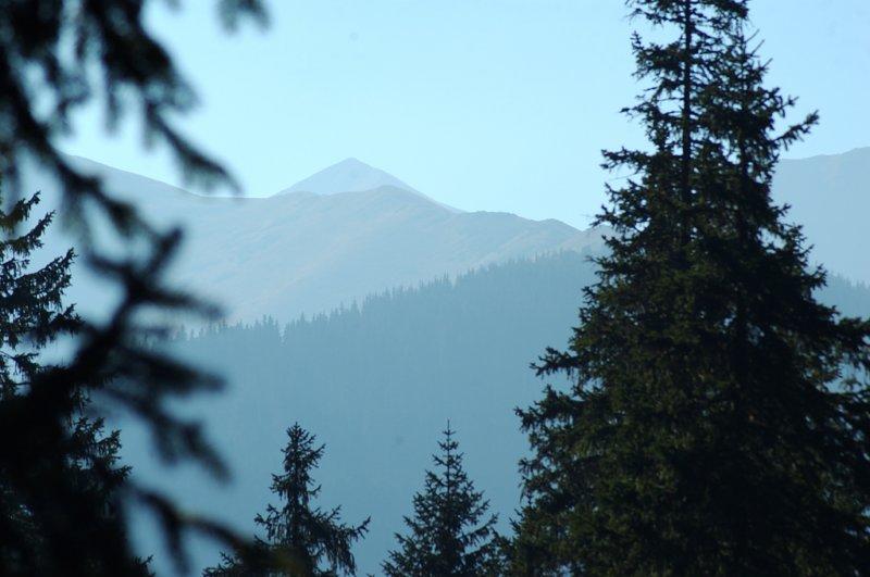 Góry wyszły, jak z kąpieli - Dolina Chochołowska