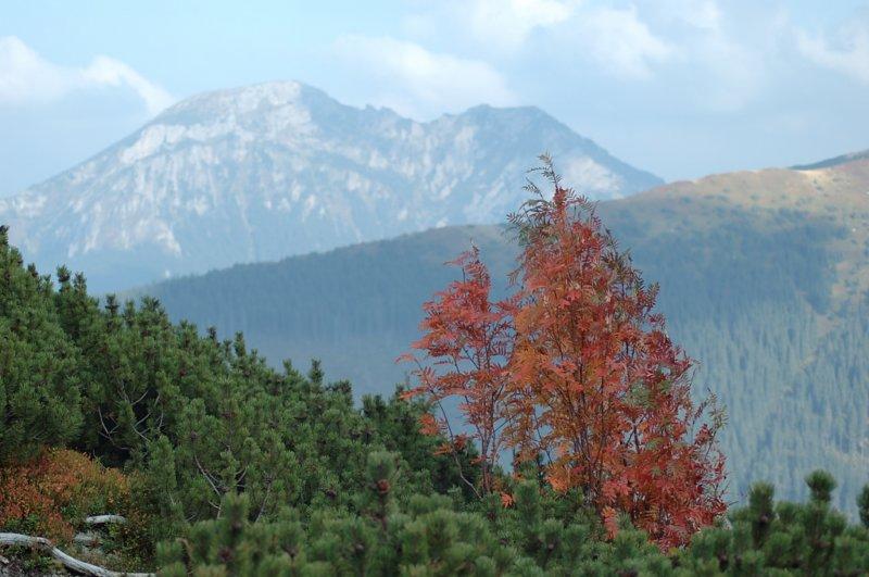 W górach nie widać człowieka