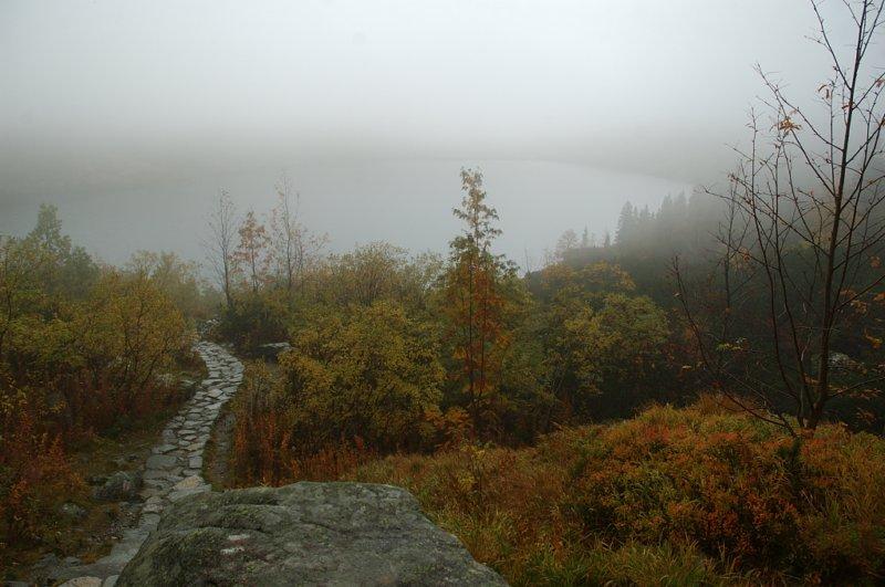 Usypiających mgieł wilgocie