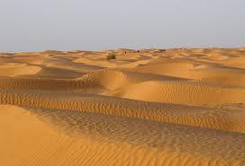 TUNEZJA - Sahara